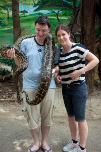 Python, it was quite heavy.