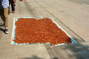 Someone drying spices on the street