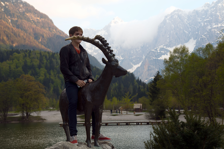 Mounting Alpine ibex.