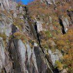 Waterfalls in Lofoten