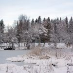 Frozen lake behind LTU