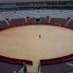 Bull fighting arena