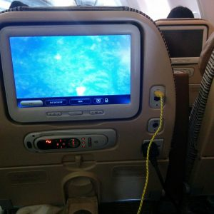 """We fley with Etihad airways. Very nice that they have USB and """"normal"""" chargers on each sit. Is very good during long flights."""