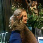 Kangaroo and it's super soft fur.