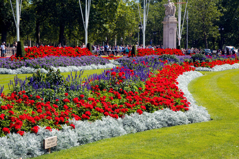 Nicely groomed flower's garden