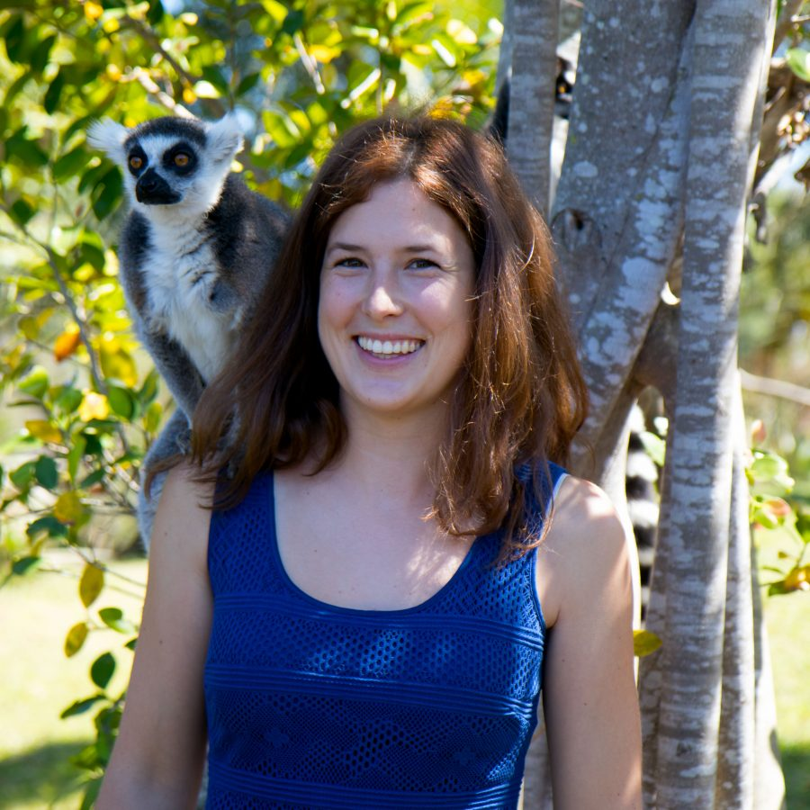 Lemur or a Parrot?