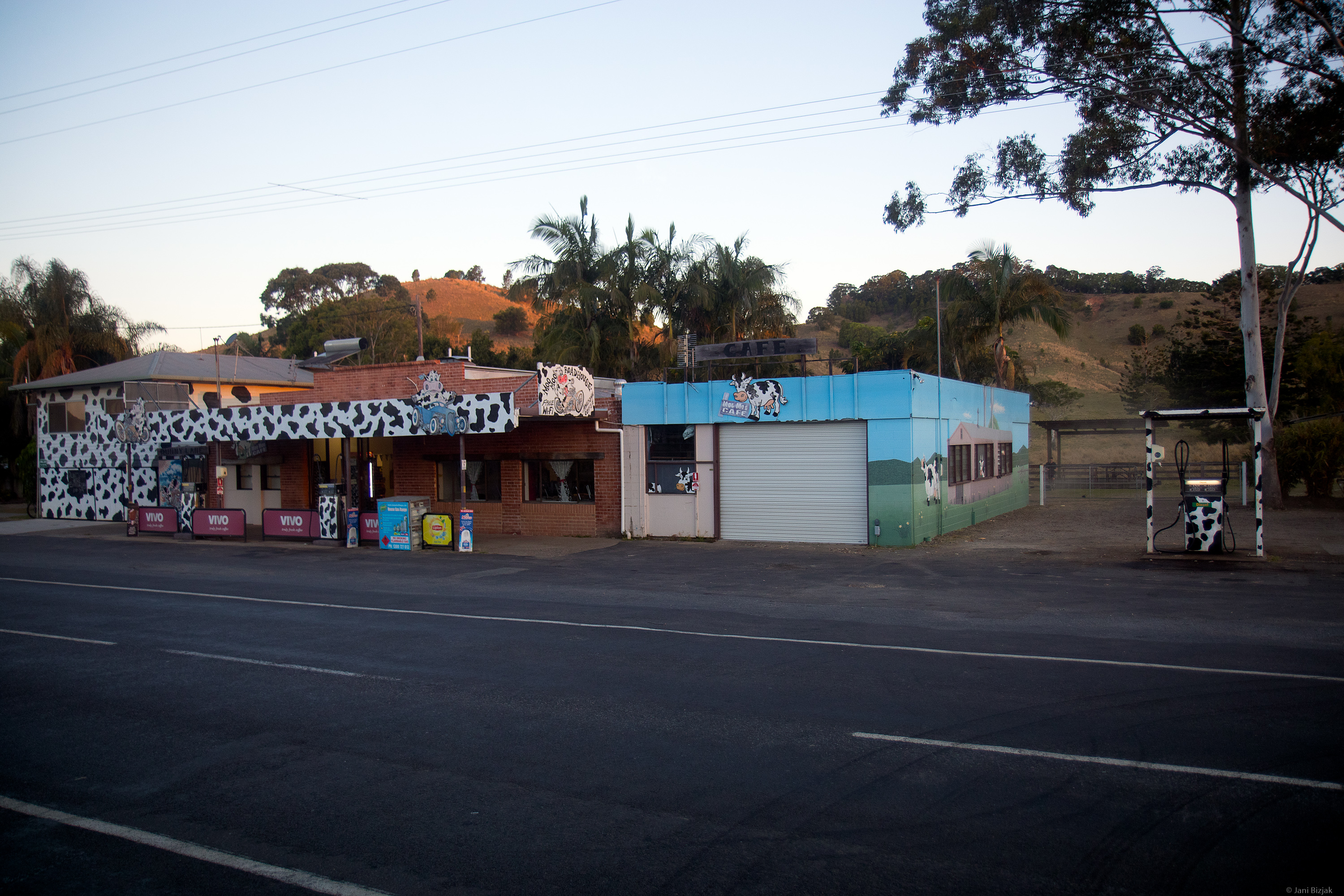 At least we had an opportunity to see this cow gas station on the way.