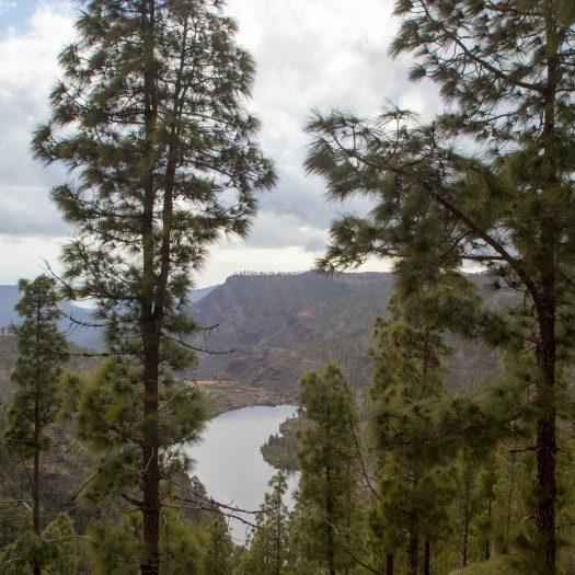 Views over some lake