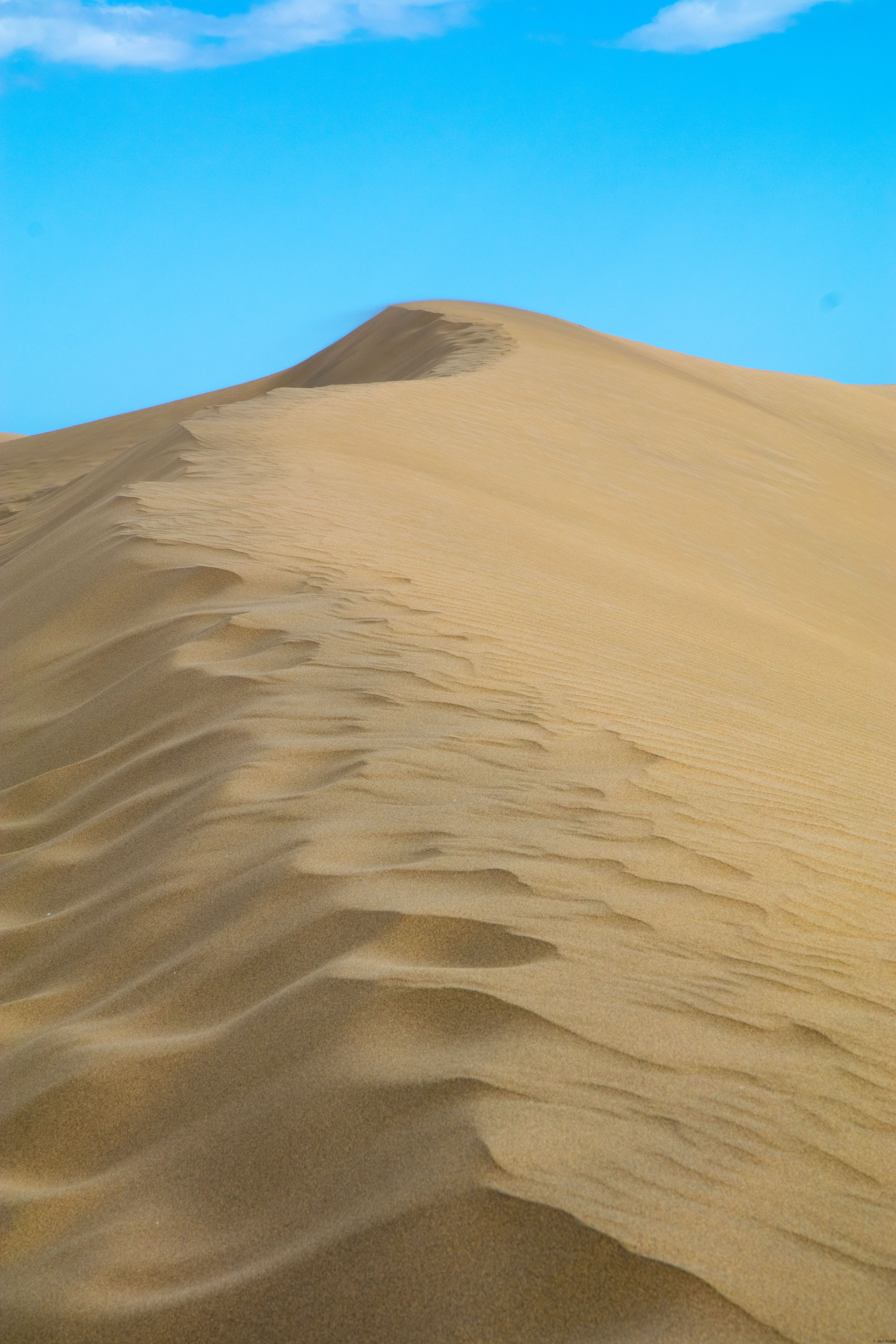 The dunes were surprisingly large, it took quite some time to get on top of one.