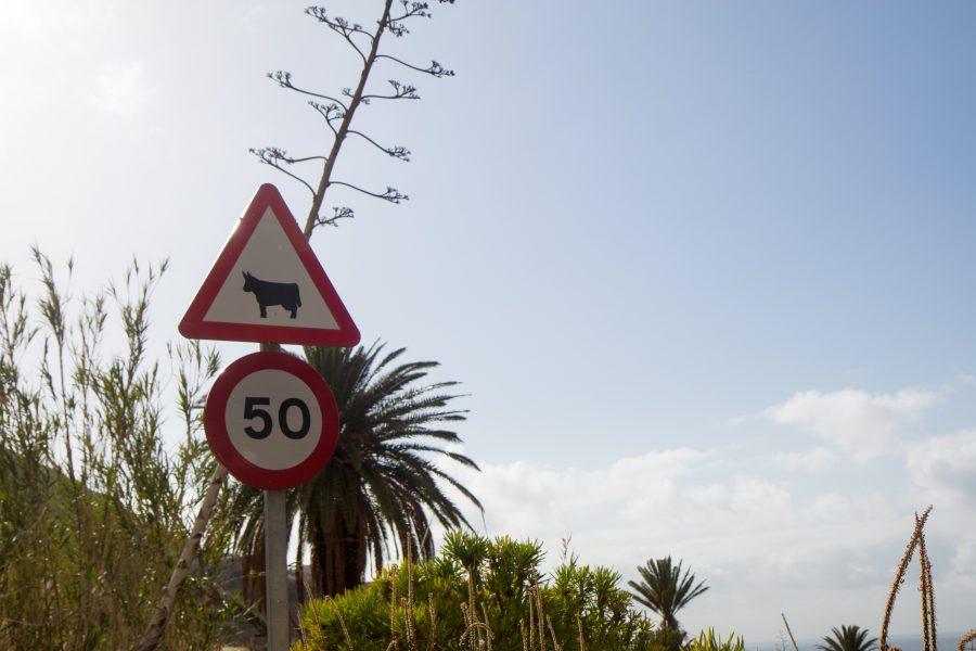 Traffic sign.