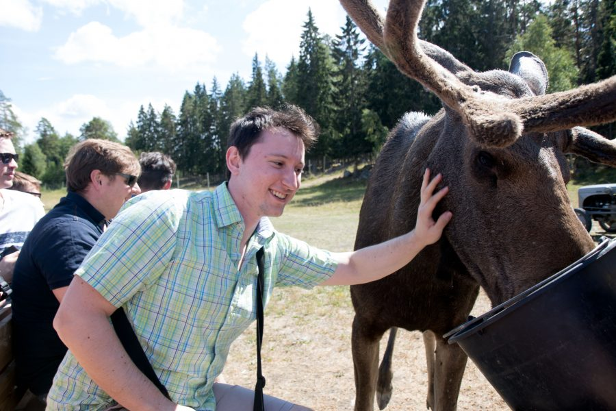 Petting a moose.