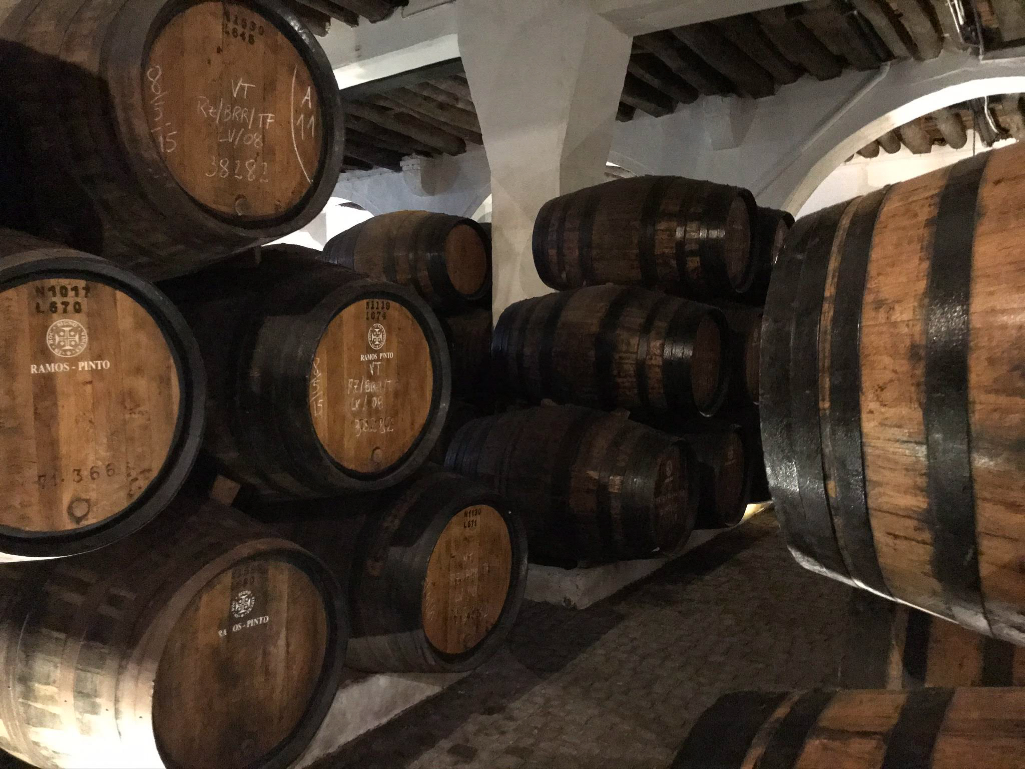 Inside a wine cellar.